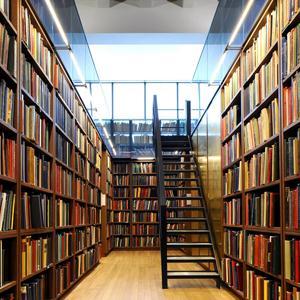 Библиотеки Севска
